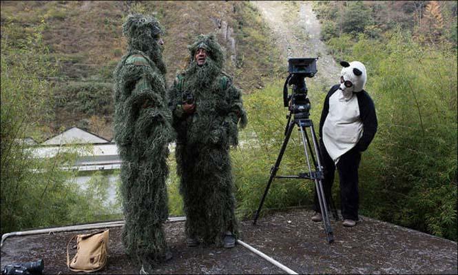 Φωτογράφοι άγριας φύσης επί το έργον (22)