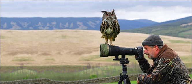 Φωτογράφοι άγριας φύσης επί το έργον (24)