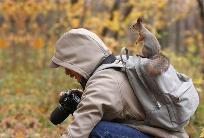 Φωτογράφοι άγριας φύσης επί το έργον (26)