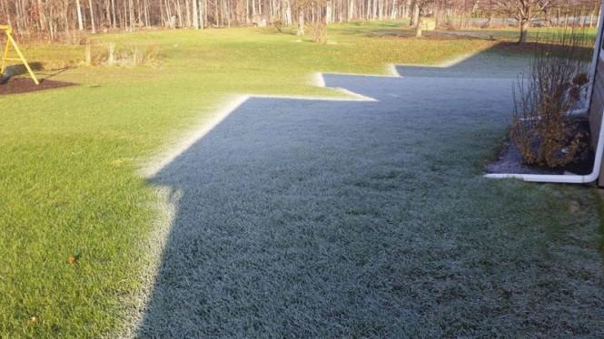Όταν η σκιά γίνεται σύμμαχος του πρωινού παγετού | Φωτογραφία της ημέρας
