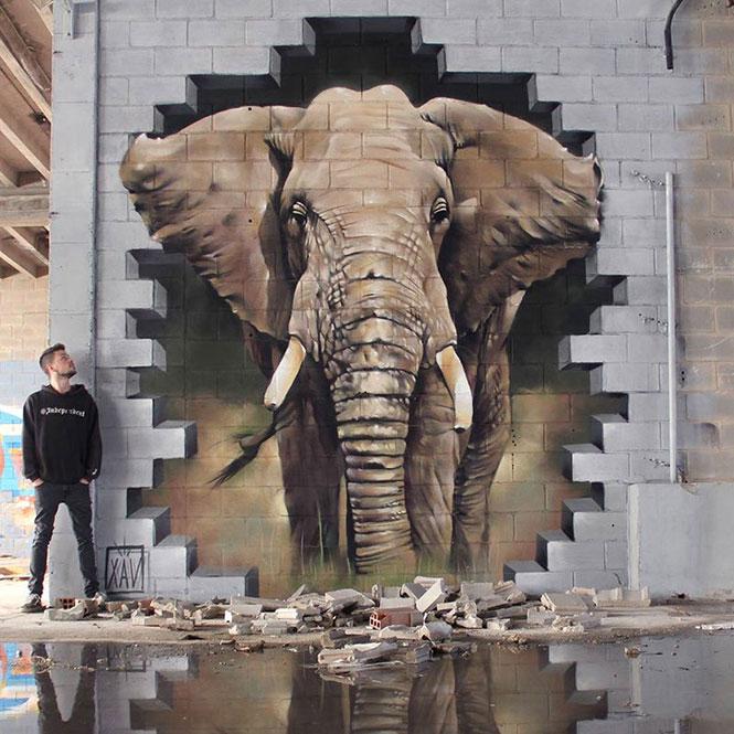 «Ισοπεδωτική» τέχνη σε τοίχο | Φωτογραφία της ημέρας