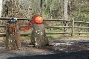 Τι συμβαίνει όταν φουσκώνεις υπερβολικά μια μπάλα του μπάσκετ