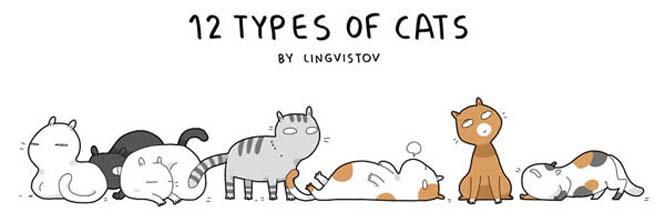 Τύποι γάτας (1)