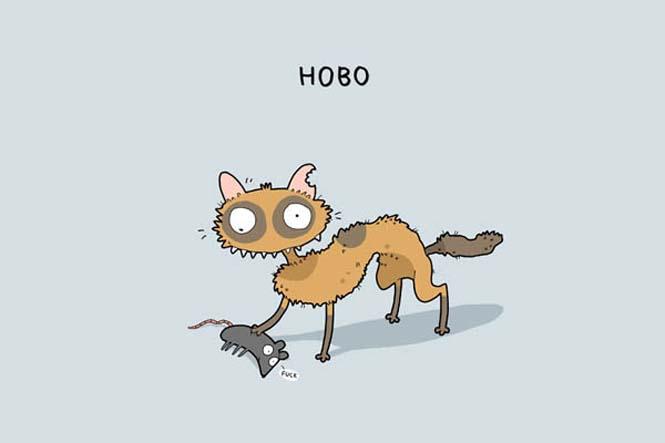 Τύποι γάτας (8)