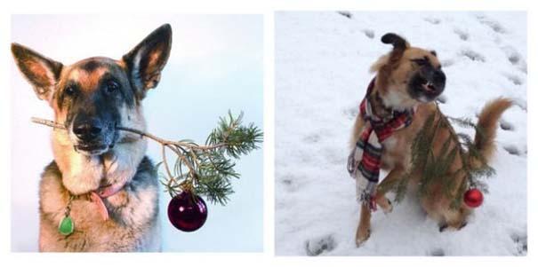 Χριστουγεννιάτικες δημιουργίες που απέτυχαν παταγωδώς... (7)
