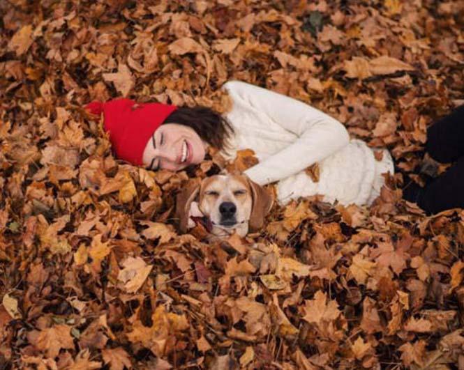 Αυτός ο σκύλος ζει το όνειρο κάθε ταξιδιώτη (9)