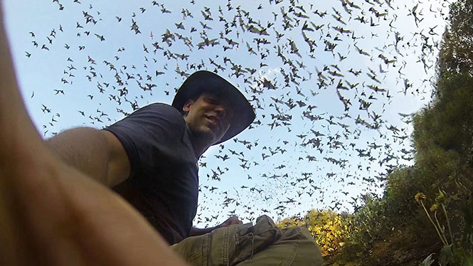 Εκατομμύρια νυχτερίδες εγκαταλείπουν μια σπηλιά ταυτόχρονα