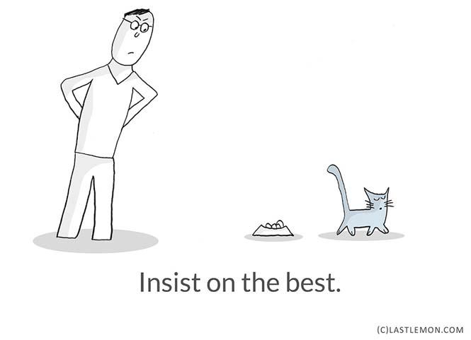 Mαθήματα ζωής από γάτες (6)