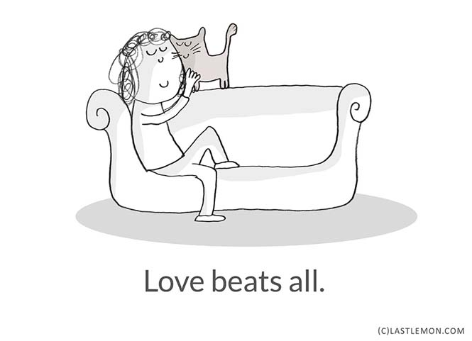 Mαθήματα ζωής από γάτες (10)