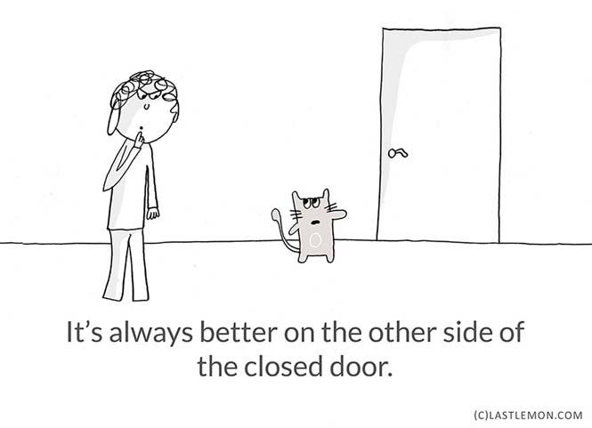 Mαθήματα ζωής από γάτες (18)