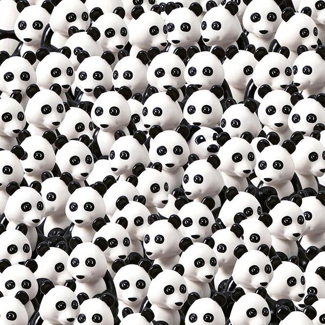 Μπορείτε να εντοπίσετε τον σκύλο ανάμεσα στα Panda; (2)