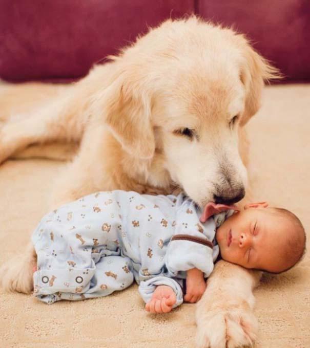 Μωρά και σκύλοι σε αξιολάτρευτες φωτογραφίες (1)