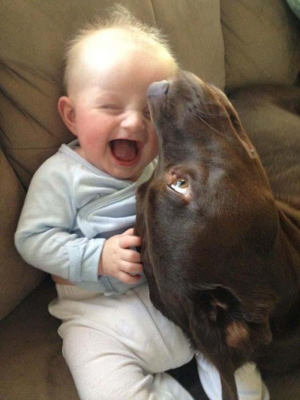 Μωρά και σκύλοι σε αξιολάτρευτες φωτογραφίες (6)