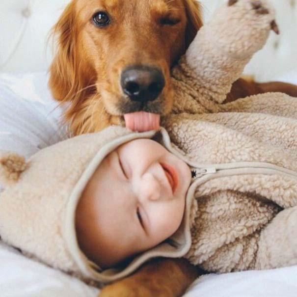 Μωρά και σκύλοι σε αξιολάτρευτες φωτογραφίες (11)