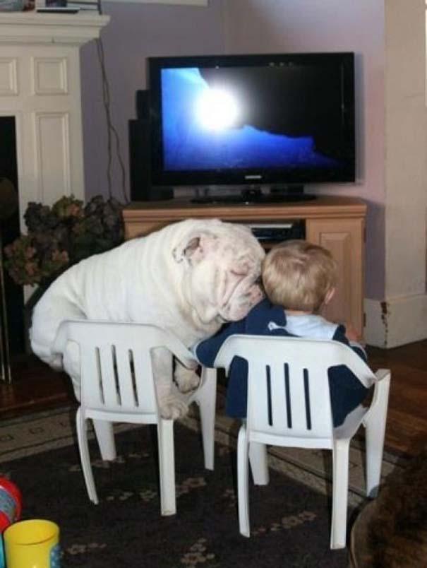 Μωρά και σκύλοι σε αξιολάτρευτες φωτογραφίες (15)