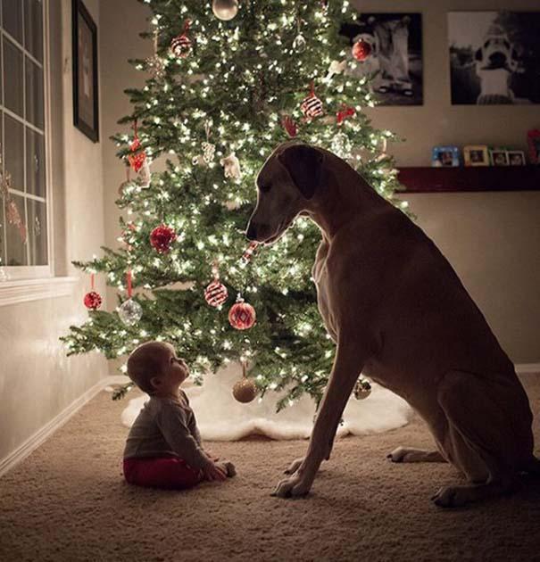 Μωρά και σκύλοι σε αξιολάτρευτες φωτογραφίες (16)