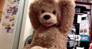 Αυτό το αθώο αρκουδάκι… προκαλεί τρόμο! (Video)