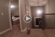 Γονείς έβαλαν στον γιο τους μια GoPro για να ανακαλύψουν το μυστικό του όπλο όταν παίζουν κρυφτό