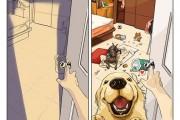 Η καθημερινότητα πριν και μετά την απόκτηση σκύλου (1)