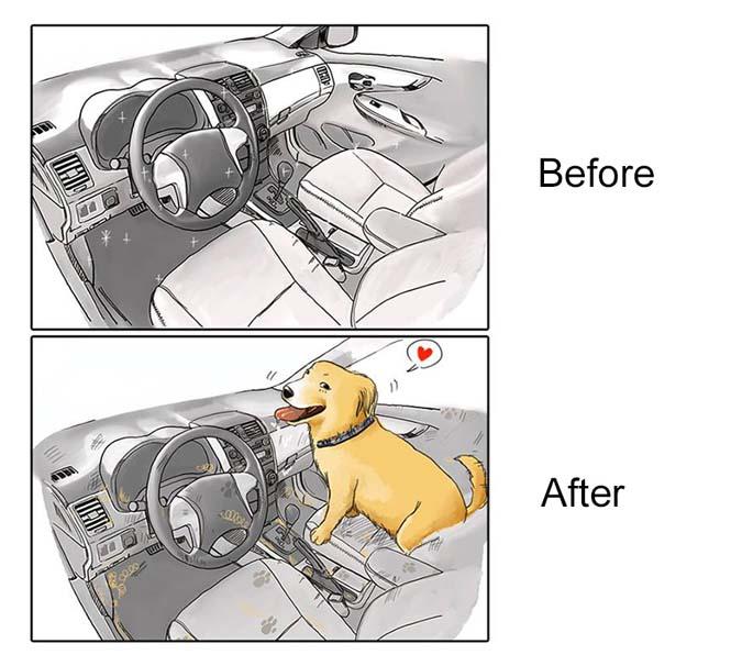 Η καθημερινότητα πριν και μετά την απόκτηση σκύλου (2)