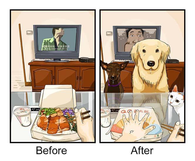 Η καθημερινότητα πριν και μετά την απόκτηση σκύλου (4)