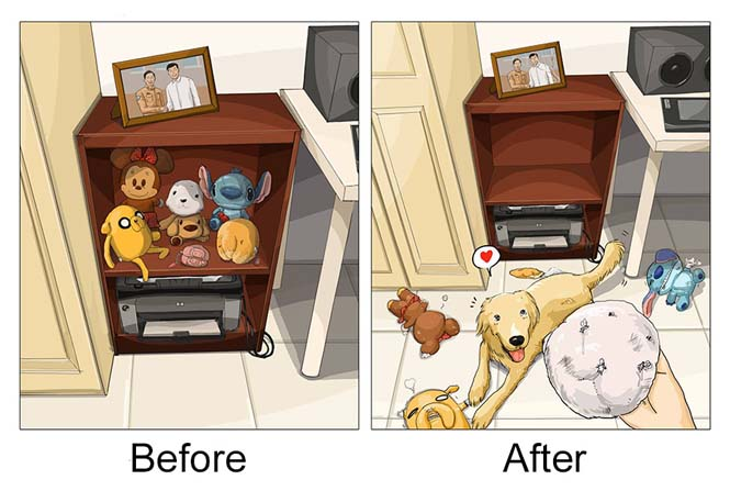 Η καθημερινότητα πριν και μετά την απόκτηση σκύλου (8)