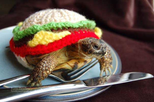 Ξεκαρδιστικές αποκριάτικες μεταμφιέσεις ζώων (11)