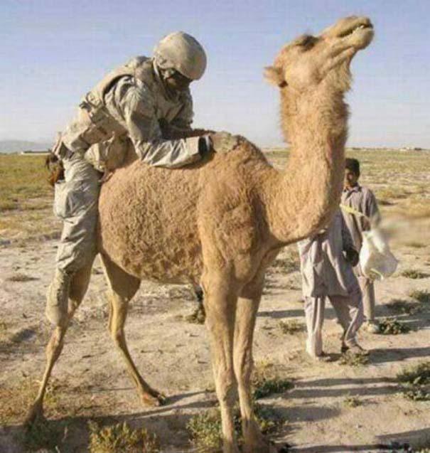 Στρατιωτικό χιούμορ #3 (12)