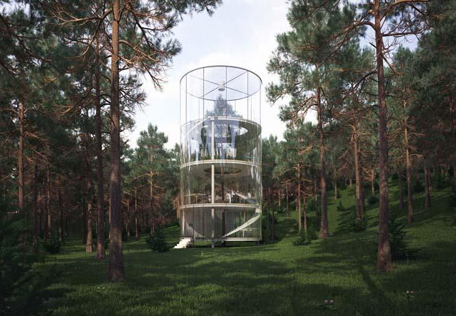 Εκπληκτικό γυάλινο σπίτι γύρω από ένα δέντρο (1)