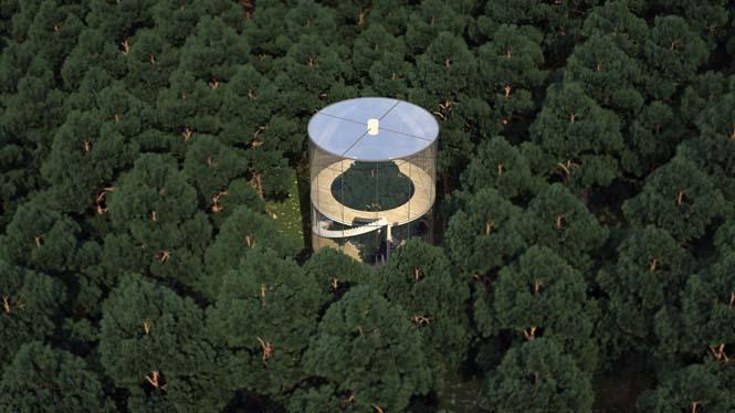 Εκπληκτικό γυάλινο σπίτι γύρω από ένα δέντρο (3)