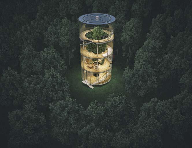 Εκπληκτικό γυάλινο σπίτι γύρω από ένα δέντρο (4)