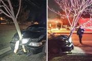 Γυναίκα οδηγούσε με ένα δένδρο καρφωμένο στο αυτοκίνητο της