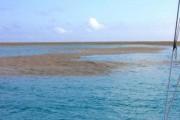 Ιστιοπλόοι ήρθαν αντιμέτωποι με κάτι πραγματικά σπάνιο στην θάλασσα (1)