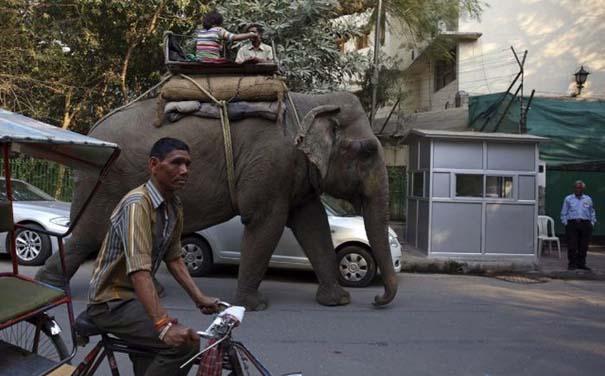 Καθημερινότητα στην Ινδία (26)