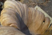 Περίτεχνη πολυθρόνα από ένα κούτσουρο βελανιδιάς (8)