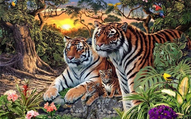 Πόσες τίγρεις μπορείτε να εντοπίσετε στη συγκεκριμένη εικόνα; (1)