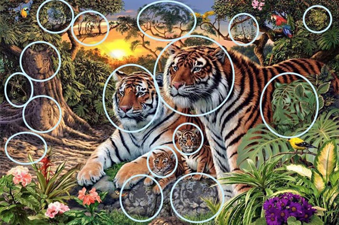 Πόσες τίγρεις μπορείτε να εντοπίσετε στη συγκεκριμένη εικόνα; (2)
