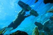 Πως είναι να «πετάς» μέσα στο νερό