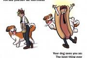 Πως βλέπεις τον εαυτό σου και πως σε βλέπει ο σκύλος σου (1)