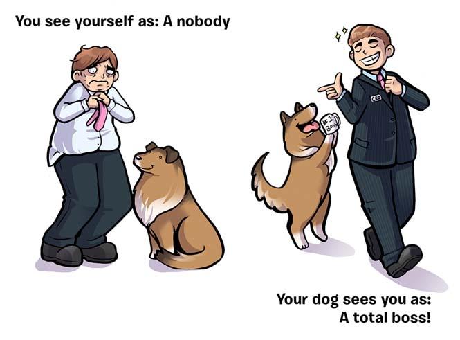 Πως βλέπεις τον εαυτό σου και πως σε βλέπει ο σκύλος σου (3)