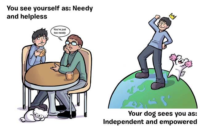 Πως βλέπεις τον εαυτό σου και πως σε βλέπει ο σκύλος σου (8)