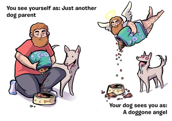 Πως βλέπεις τον εαυτό σου και πως σε βλέπει ο σκύλος σου (11)