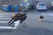 Σκύλος επιτίθεται σε ρομπότ