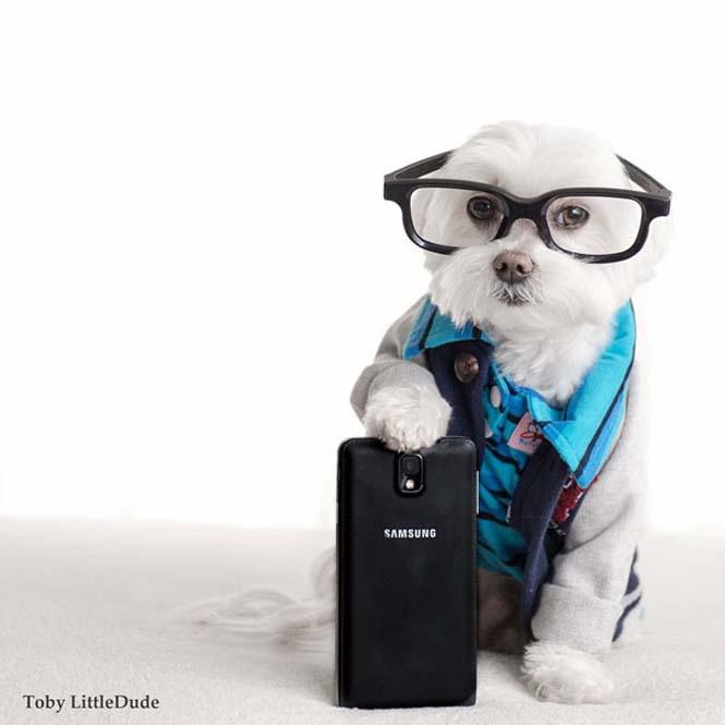 Toby: Ο μεγαλύτερος Hipster στο Instagram (5)