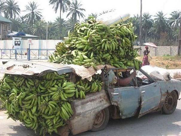 Ασυνήθιστες και εξωφρενικές μεταφορές (8)