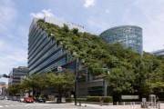 Κήποι σε στέγες κτηρίων (2)