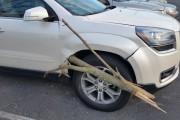 Κλαδί δένδρου σε SUV (1)