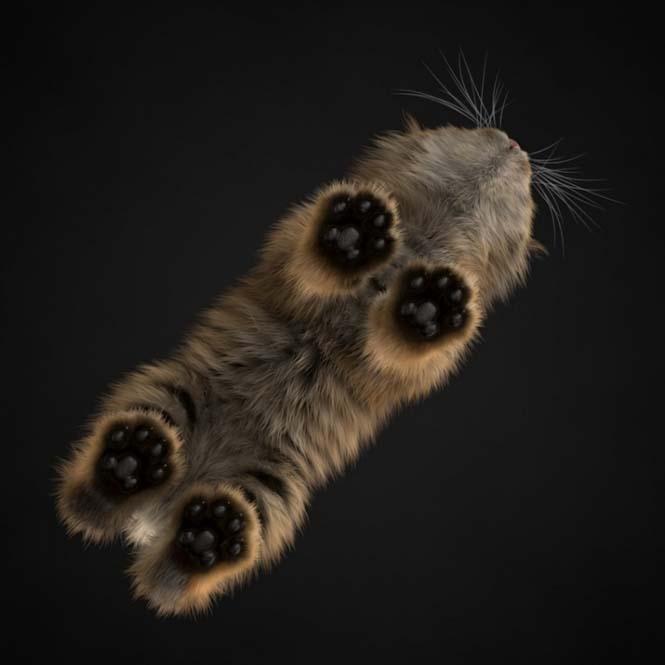 15 συνηθισμένα ζώα όπως δεν τα έχετε ξαναδεί (4)
