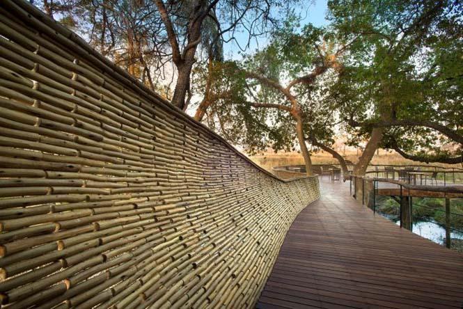 Η Μποτσουάνα διαθέτει ένα από τα κορυφαία ξενοδοχεία άγριας φύσης (12)