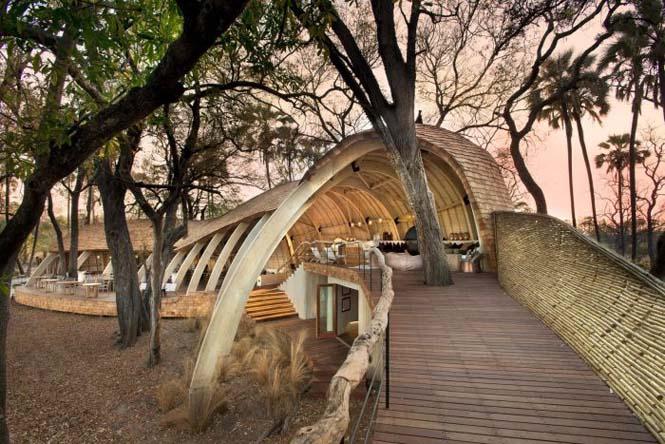 Η Μποτσουάνα διαθέτει ένα από τα κορυφαία ξενοδοχεία άγριας φύσης (14)